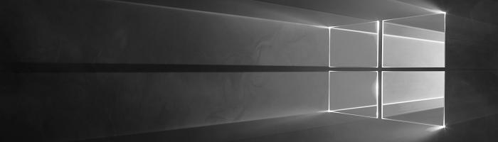 Windows 10 Logo in Grau