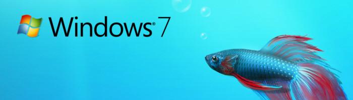 Windows 7 Kampffisch