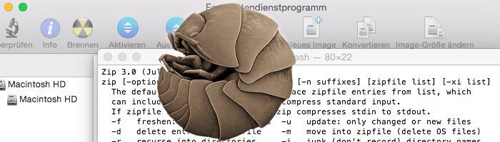 ZIP Erstellung unter einem Mac