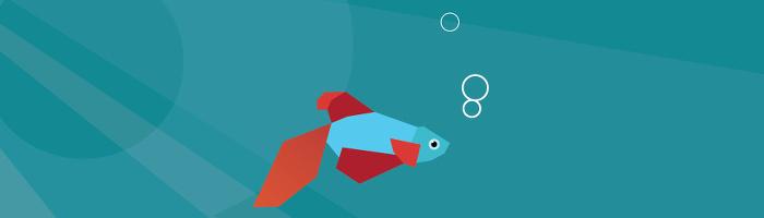 Windows 8 Beta Fisch